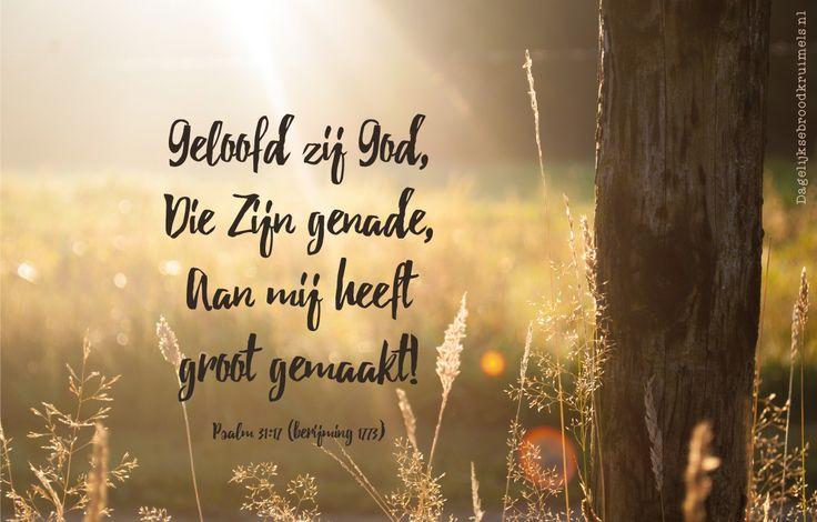 Geloofd zij God,Die Zijn genade,Aan mij heeftgroot gemaakt! Psalm 31:17 (berijming 1773)  #Genade, #God, #Psalm  http://www.dagelijksebroodkruimels.nl/psalm-31-17/