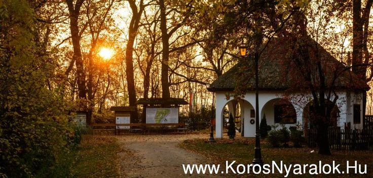 Szarvasi Arborétum www.korosnyaralok.hu