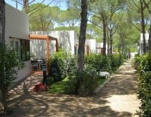 Suite Mediterranean Accommodation for max 4 persons