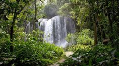 À Cienfuegos, les chutes d'El Nicho. Ou comment prendre la mesure de l'exubérante nature tropicale.