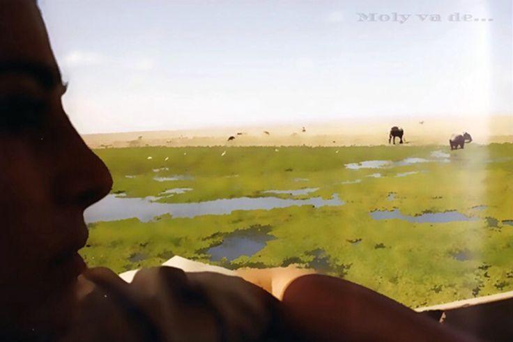 """""""Yo tenía una granja en #África al pié de las colinas del Ngong"""" #Molyvade...#viaje #Kenia #Amboseli molyvade.blogspot.com"""