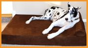 Orthopedic Dog Beds for Large & Extra Large Dogs. Handmade in the USA. | Big Barker