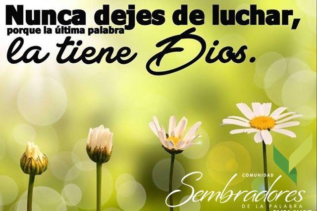 Nunca dejes de luchar, por que la ulrima palabra la tiene Dios.  #sembradoresdelapalabra #comunidadcatolica #comunidadsempal #rccdecolombia #rccbogota www.sembradoresdelapalabra.com