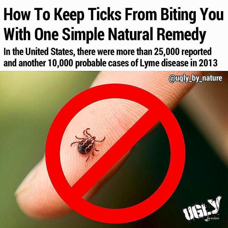 Most of the cases happen between June and August with July being the worst month. Lyme disease is transmitted to humans through a tick bite.  Most commercial tick repellents contain a strong concentrate (at least 20% up to 100%) of a chemical called DEET (N N-diethyl-m-toluamide). The New York State Department of Health warned of possible skin reactions (especially when using a DEET concentrate of 50% or above) and nervous system problems (from speech problems to seizures and even coma). It…
