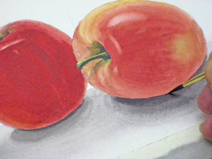 How to Paint an Apple with Watercolor