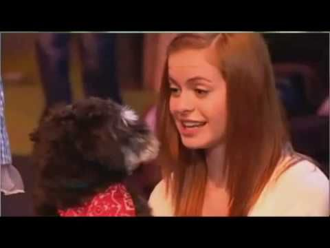 tribute to over the rainbow's sophie evans - reflection