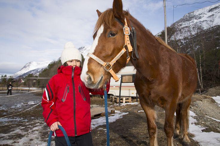 Bella/horse