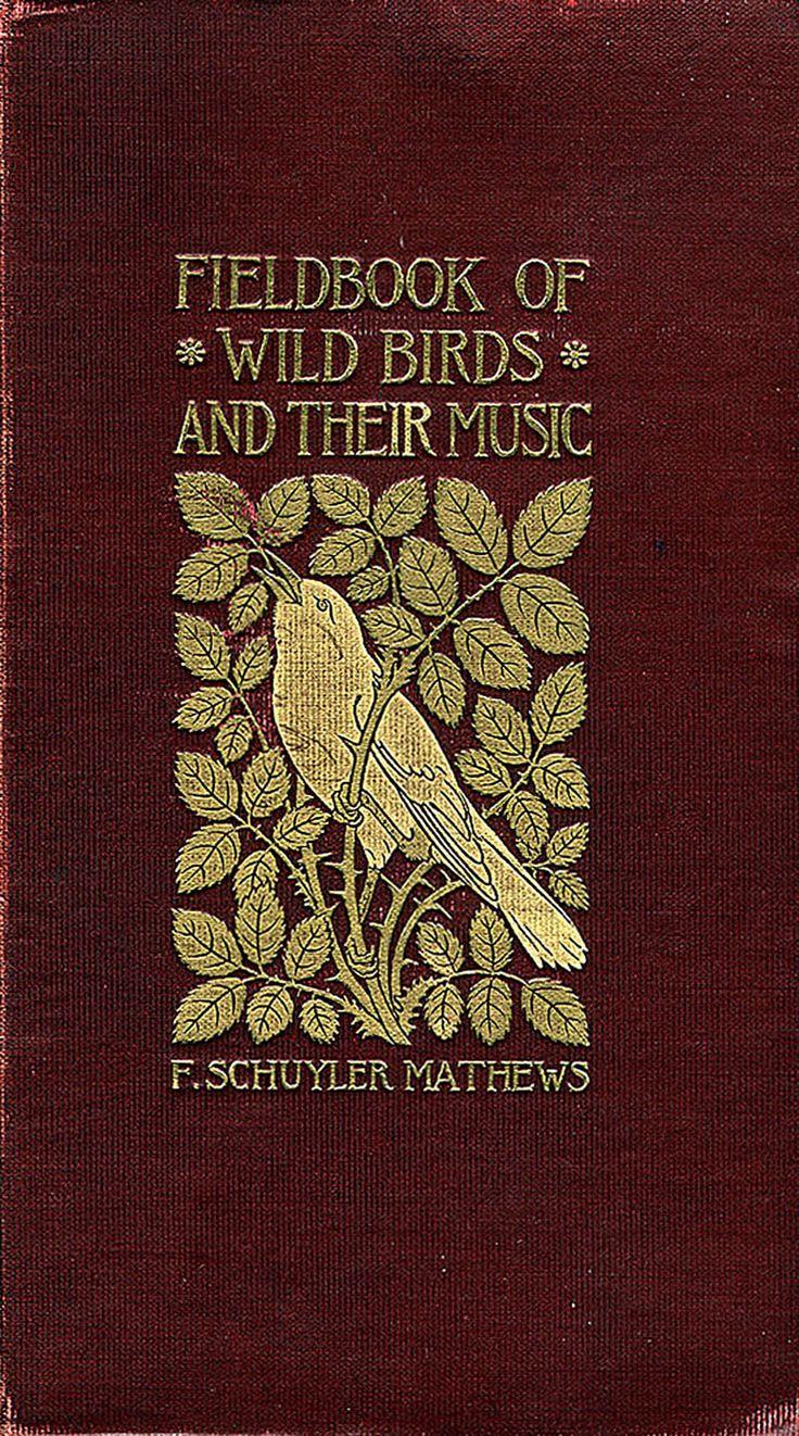 'Fieldbook of Wild Birds and Their Music' by F. Schuyler Matthews; New York, 1907