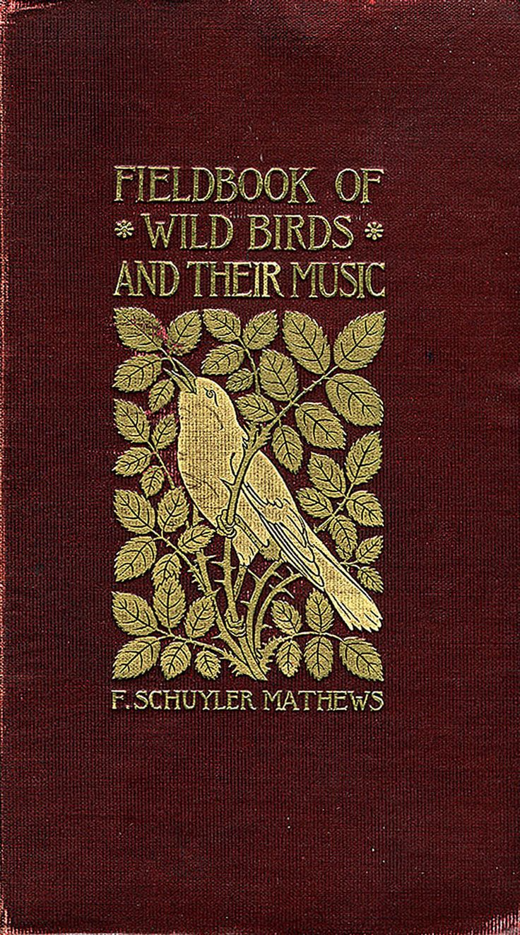 'Field book of wild birds and their music' by F. Schuyler Matthews; New York, 1907