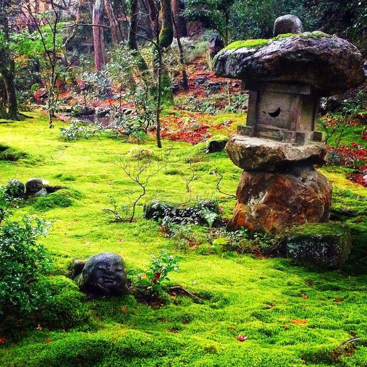 大原三千院にて。 苔と紅葉のコントラストが綺麗です。 #京都 #大原 #大原三千院 #京都紅葉