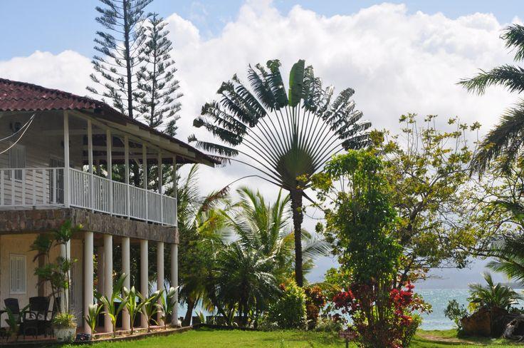 Bocas del Drago, Panama