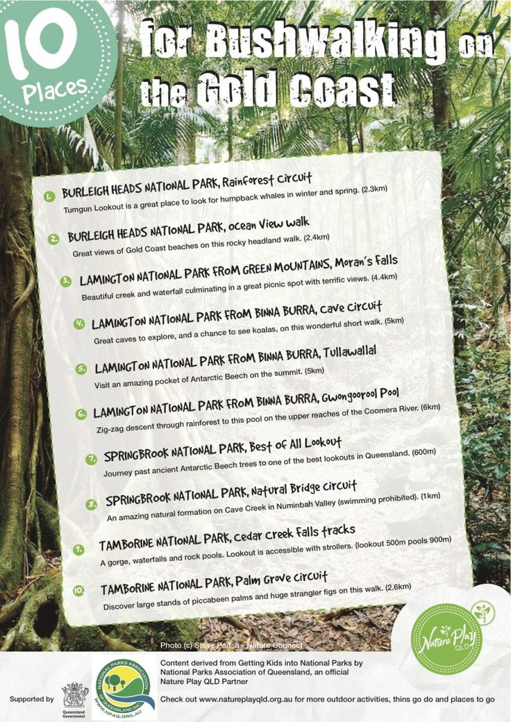 Nature Play QLD's Nature Playlists are outdoor play ideas of things to do and places to go for children, kids and families. Content for '10 Places for bushwalking on the Gold Coast' was supplied by National Parks Association of Queensland