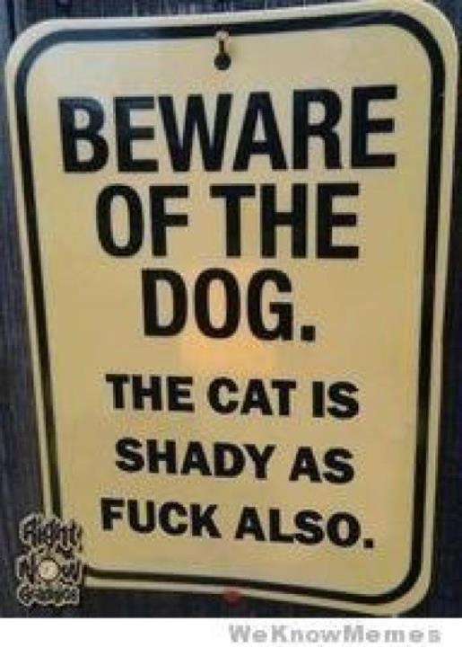 BEWARE OF THE DOG... the cat is shady as f*ck also.