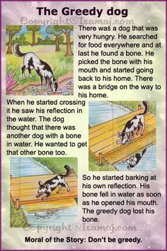 Moral Stories: The Greedy Dog                                                                                                                                                                                 More