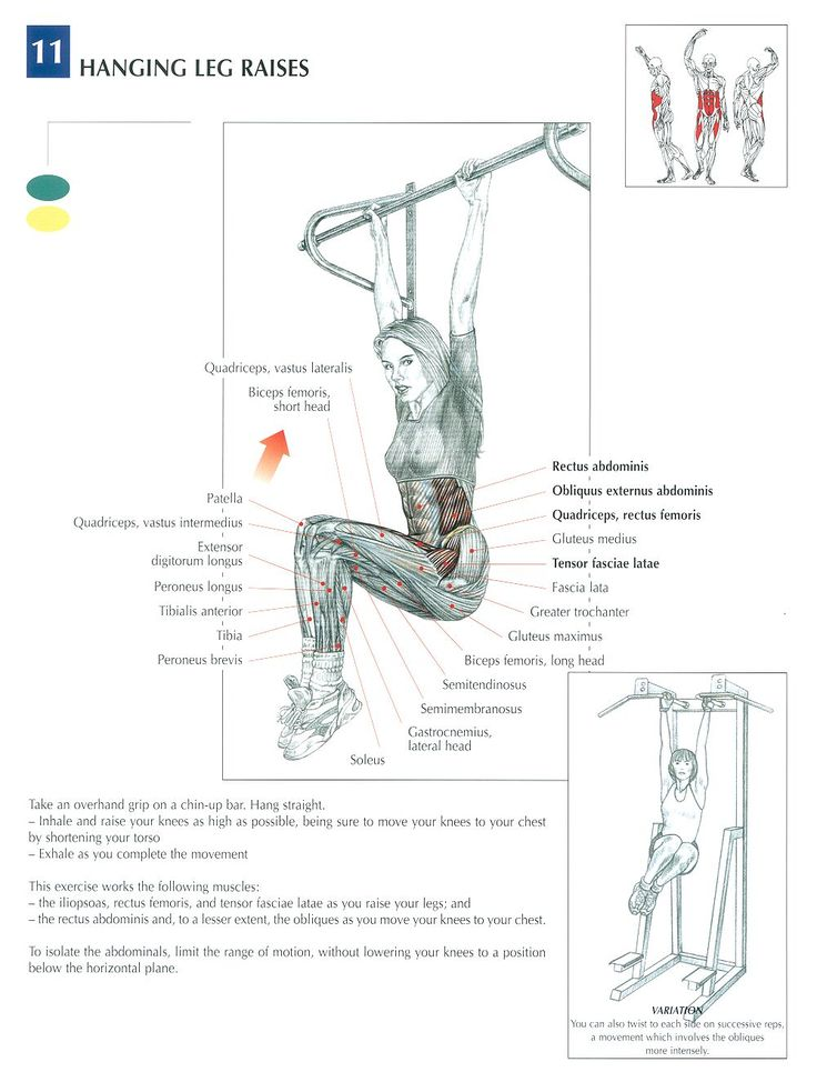 76 best images about weight lifting on pinterest cable triceps and chest workouts. Black Bedroom Furniture Sets. Home Design Ideas