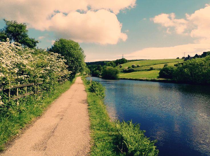 Taken on the Rochdale Canal near Summit.