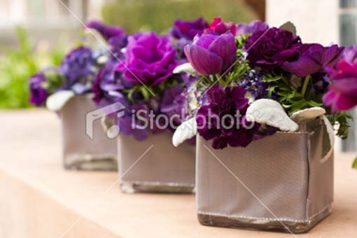 Small centre pieces wedding flowers pinterest purple