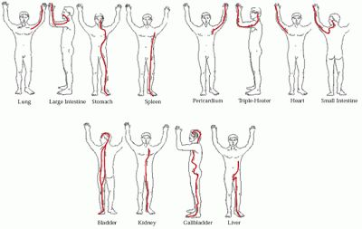 Your acupuncture meridians. For more information, please