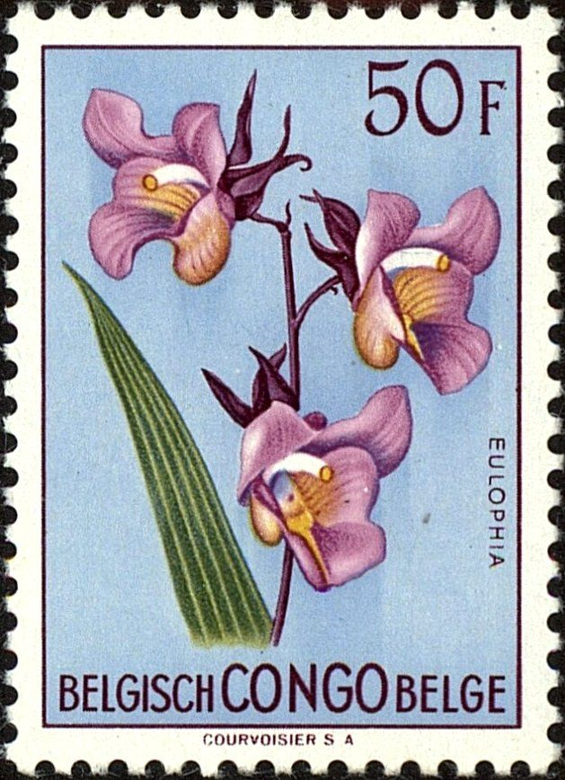 Stamp: Eulophia cucullata (Belgian Congo) (Flowers) Mi:BE-CD 315,Sn:BE-CD 283,Yt:BE-CD 322,Sg:BE-CD 316,Bel:BE-CD 322