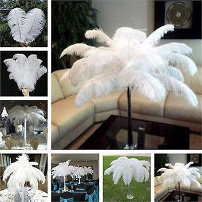 white Ostrich Feathers Plumes Craft Millinery 10-12inch Long 50pcs in Trimmings | eBay