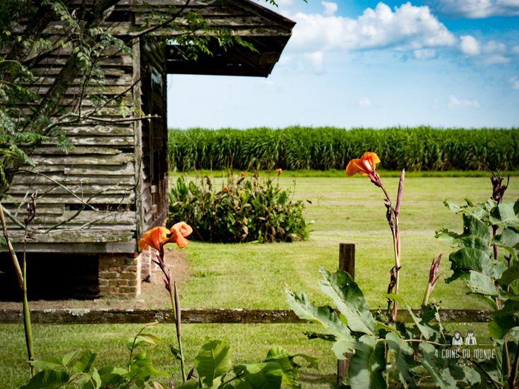 Visiter une plantation en Louisiane c'est se plonger dans l'histoire du Sud des Etats-Unis