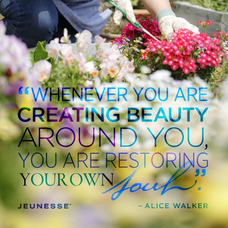 Whenever you are creating beauty around you, you are restoring your own soul.  -Alice Walker