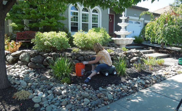 25 Different Examples Of Waterwise Front Yards Waterwise