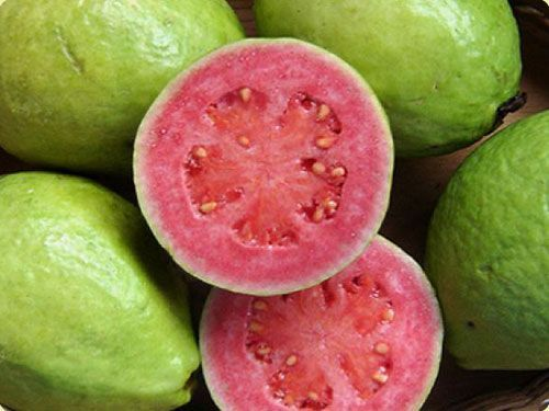 ESP PE: Guayaba • EN: Guava • IT: Guaiava, guava • LAT: Psidium guajava