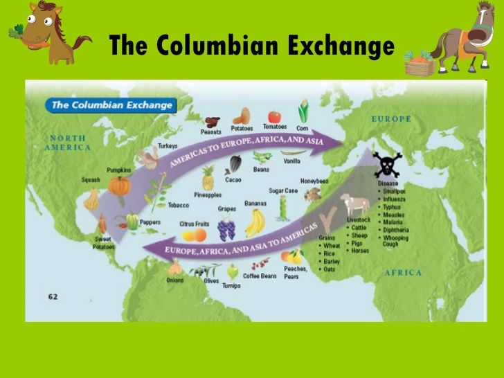 Intended and unintended consequences of the columbian exchange