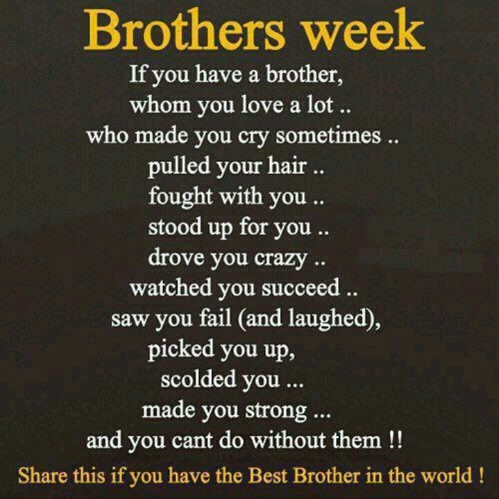 We Are Brothers From Different Mothers Quotes: Sister Encouragement Poems