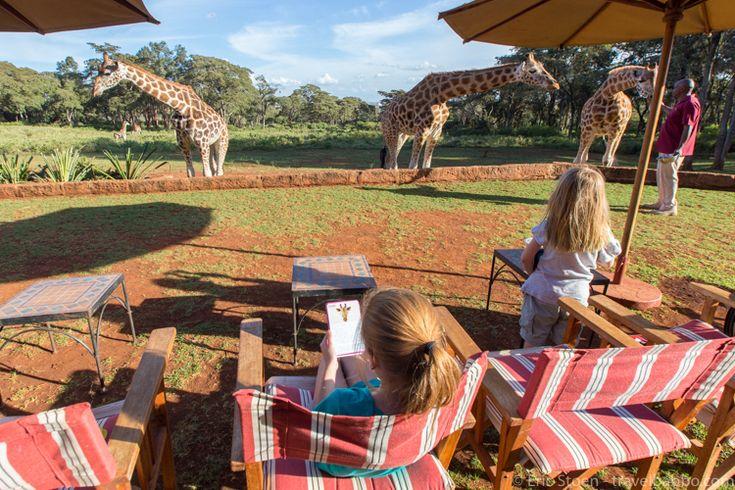 Giraffe Manor Kenya - Taking a break to brush up on giraffe facts (cards from Tava Adventures)