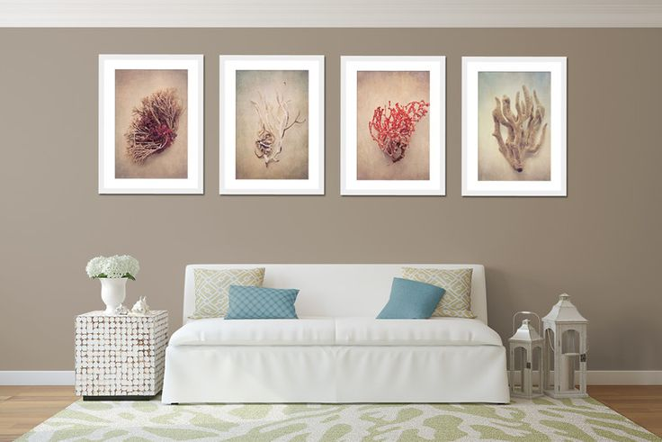 """Gifts of the Sea"" print set - 4x 50x75cm prints by Natascha van Niekerk Fine Art Photography"