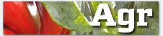 La zona de ocio ofrece con éxito de participación piloxing, zumba y pilates - Contenido seleccionado con la ayuda de http://r4s.to/r4s