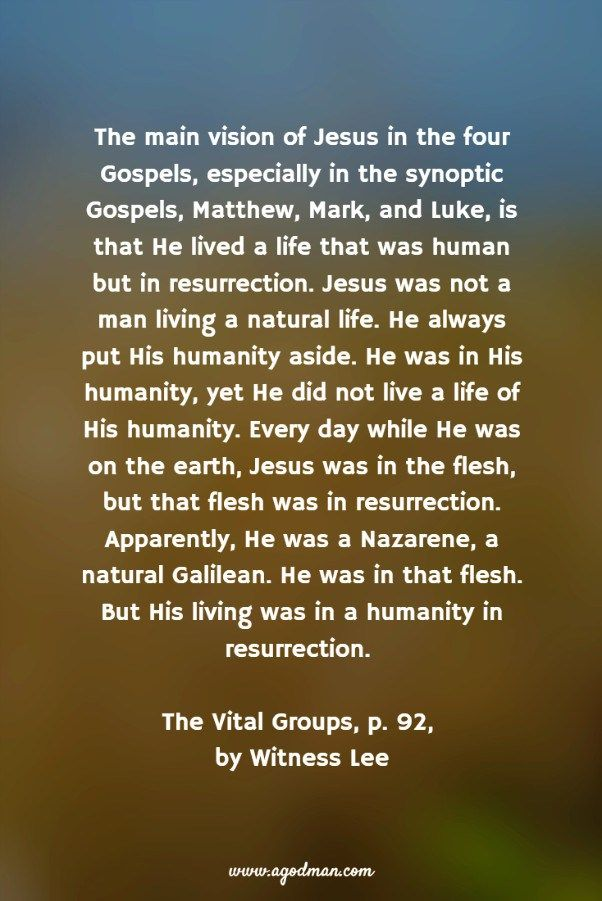 The main vision of Jesus in the four Gospels, especially in the synoptic Gospels, Matthew, Mark, and Luke, is that He lived a life that was human but in resurrection. Jesus was not a man living a natural life. He always put His humanity aside. He was in His humanity, yet He did not live a life of His humanity. Every day while He was on the earth, Jesus was in the flesh, but that flesh was in resurrection. Apparently, He was a Nazarene, a natural Galilean. He was in that flesh. But His living…
