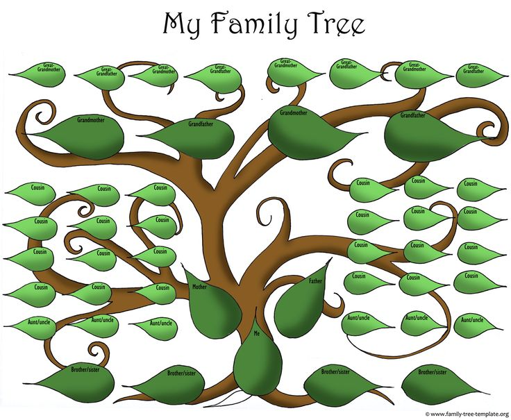 Best Family Tree Template Images On   Family Trees