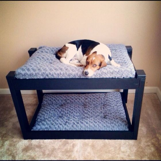 Simple Dog Bunk Beds But Put In To The Wall