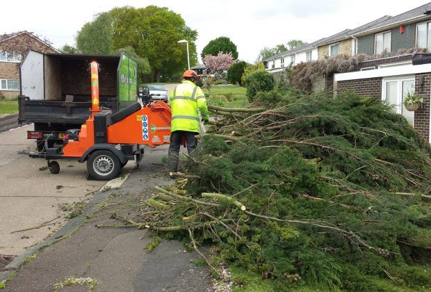 How #Tree #Surgeons Help In Keeping #Your #Garden In A #Healthy #Condition - The professionals such as Tree Surgeons Upminster help in carrying out regular check-up of all the plants and trees at your place. It is similar to taking care of human body by the doctors and surgeons. Like human beings, trees and plants also need to get regularly checked up for any diseases or other problems. And this task is well-performed by the tree surgeons to assure overall health of your garden.