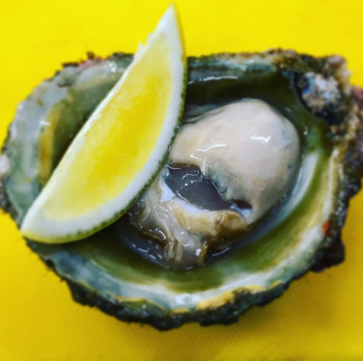 Fresh first of the season NZ Bluff oysters
