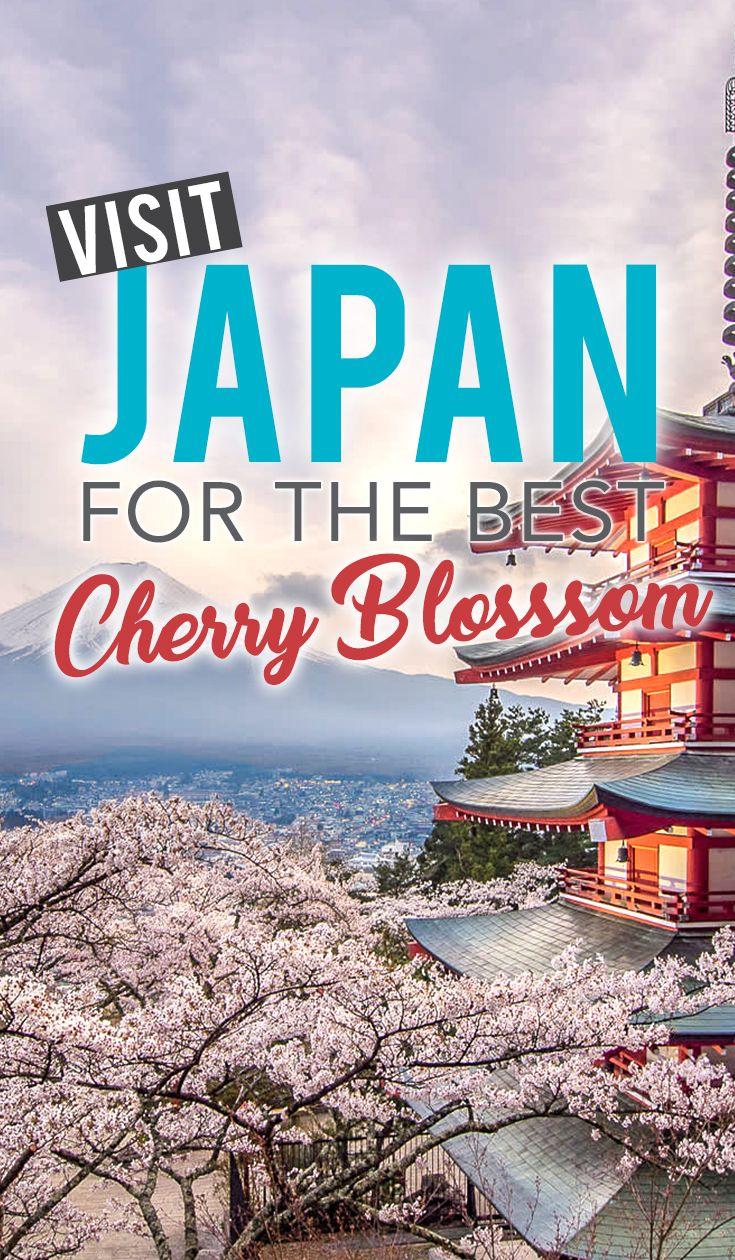 Account Suspended Travel Destinations Asia Japan Travel Guide Asia Destinations