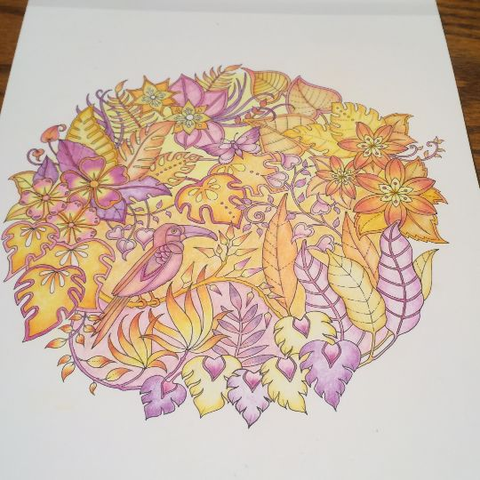 Take A Peek At This Great Artwork On Johanna Basfords Colouring Gallery Adult ColoringColoring