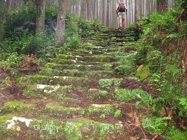 El Camino De Santiago Trail   ESCAPADA Por las sendas del Kumano, el «otro» Camino de Santiago