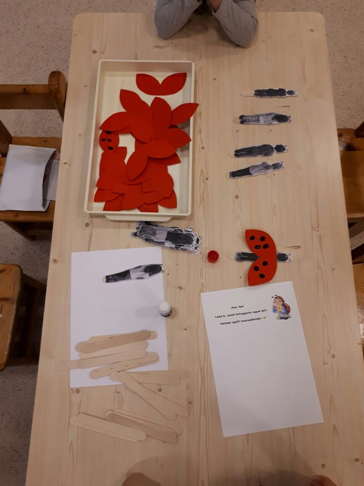 Ladybug project