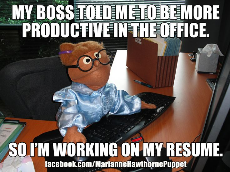Fun Office Meme : My boss told me to be more productive in the office so i