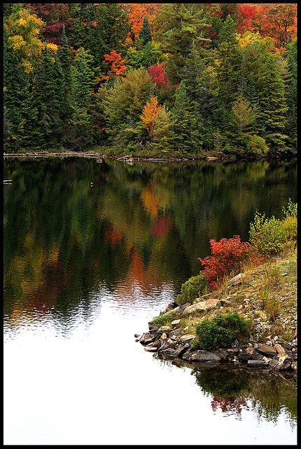 Tea Lake, Algonquin Provincial Park, Ontario, www.OakvilleRealEstateOnline.com