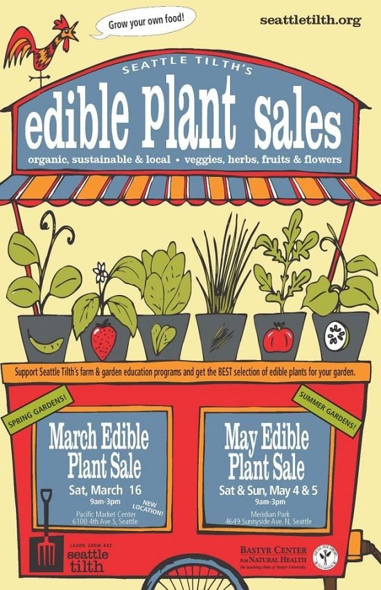 Seattle Tilth Edible Plant Sale, Saturday, March 16, 2013. Shop for organic, locally grown vegetables, fruit shrubs, herbs and more!