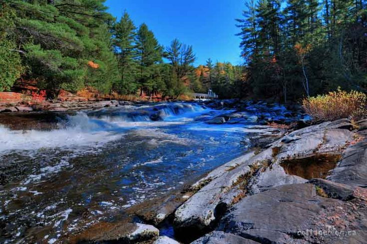 Located near Bracebridge on the north branch of the Muskoka River is Wilson's Falls.