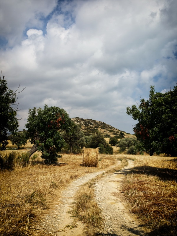 Cyprus Nature | Animals, Plants & Nature | Cyprus Photography Community
