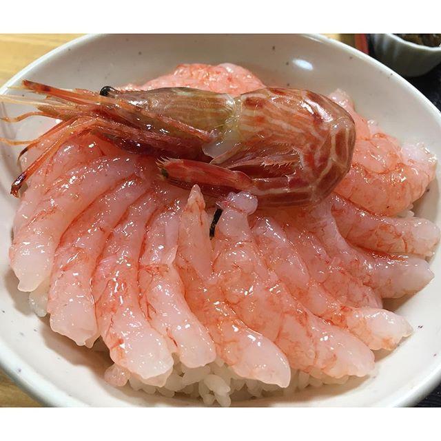 羽幌にある「北のにしん屋さん」で甘エビ丼1100円。えび好きには至福の時。 #甘エビ #海老 #エビ #えび #海鮮丼 #刺身 #ガチうまい #海 #北海道 #丼 #ごはん #ピンク #寿司 #shrimp #Sashimi #sweet #Sushi #japan #japanesefood #food #yum #yummy #delicious #seafood #good #pink #새우 #스시 #일본 2016/06/26 02:01:13