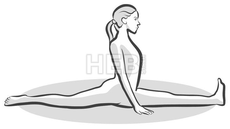Monkey Hanumanasana Yoga Pose by Hebstreits #stockimage #design