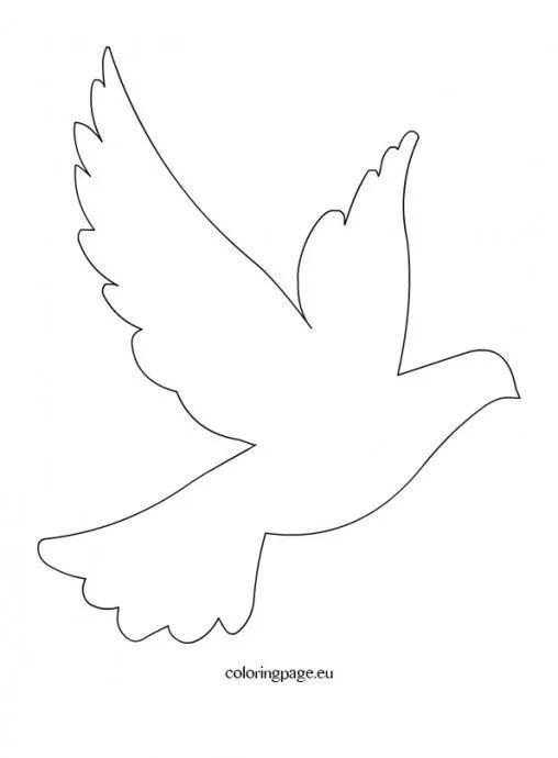 Шаблоны голубей для открытки